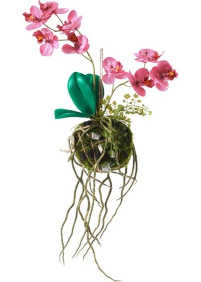 Orchidea artificiale kokedama